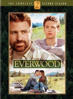 Everwood movie poster (2002) poster MOV_0e598a25