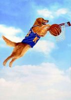 Air Bud movie poster (1997) picture MOV_0f03afdb