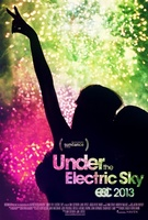 EDC 2013: Under the Electric Sky movie poster (2013) picture MOV_0f5fe707