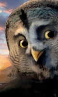 Legend of the Guardians: The Owls of Ga'Hoole movie poster (2010) picture MOV_1165f5ac