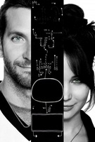 Silver Linings Playbook movie poster (2012) picture MOV_147f4b06