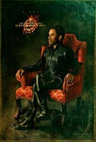 The Hunger Games: Catching Fire movie poster (2013) picture MOV_17d9f088