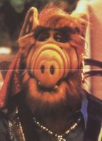ALF movie poster (1986) picture MOV_1ac952b7
