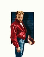 Rebel Without a Cause movie poster (1955) picture MOV_1c9c9bb3