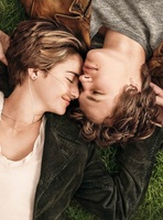 The Fault in Our Stars movie poster (2014) picture MOV_1e53be72