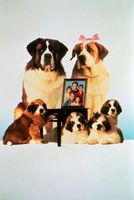 Beethoven's 2nd movie poster (1993) picture MOV_1ef3aca9