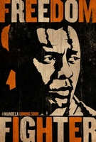 Mandela: Long Walk to Freedom movie poster (2013) picture MOV_1f3c0f52