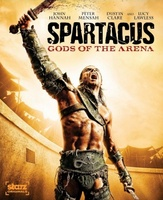 Spartacus: Gods of the Arena movie poster (2011) picture MOV_218ee8da