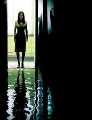 Dark Water movie poster (2005) poster MOV_24733a2c