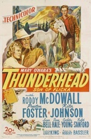 Thunderhead - Son of Flicka movie poster (1945) picture MOV_27a33165