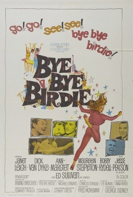 Bye Bye Birdie movie poster (1963) poster MOV_28e11503