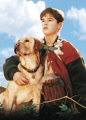 Far from Home: The Adventures of Yellow Dog movie poster (1995) poster MOV_290d3378