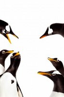 Mr. Popper's Penguins movie poster (2011) picture MOV_29e7f540