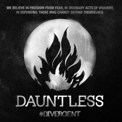 Divergent movie poster (2014) poster MOV_2e155285