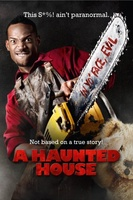 A Haunted House movie poster (2013) picture MOV_2f07f07e