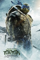 Teenage Mutant Ninja Turtles movie poster (2014) picture MOV_2fd9b825