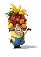 Despicable Me 2 movie poster (2013) picture MOV_307c654a