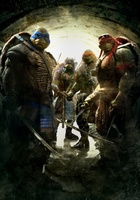 Teenage Mutant Ninja Turtles movie poster (2014) picture MOV_341a9a08