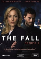 The Fall movie poster (2013) picture MOV_274a833c