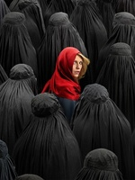 Homeland movie poster (2011) picture MOV_344b1df9