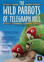 The Wild Parrots of Telegraph Hill movie poster (2003) picture MOV_36cfbe2d