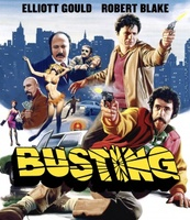 Busting movie poster (1974) picture MOV_3852021a