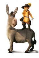 Shrek 2 movie poster (2004) picture MOV_386d080a