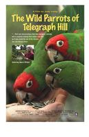 The Wild Parrots of Telegraph Hill movie poster (2003) picture MOV_39ac8c0f