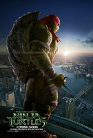 Teenage Mutant Ninja Turtles movie poster (2014) picture MOV_3ad17851