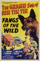 Fangs of the Wild movie poster (1939) picture MOV_3d53ca56