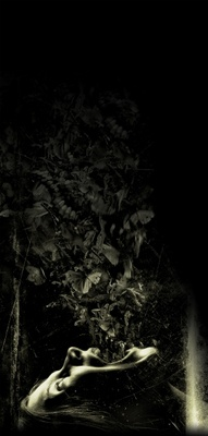 The Possession movie poster (2012) poster MOV_3eca81c8