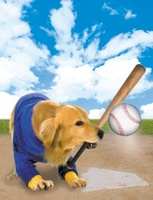 Air Bud: Seventh Inning Fetch movie poster (2002) picture MOV_3facff62