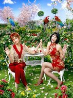 Pushing Daisies movie poster (2007) picture MOV_429f8840
