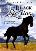 The Black Stallion movie poster (1979) picture MOV_43a244bb
