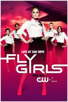 Fly Girls movie poster (2010) picture MOV_43c50bd7