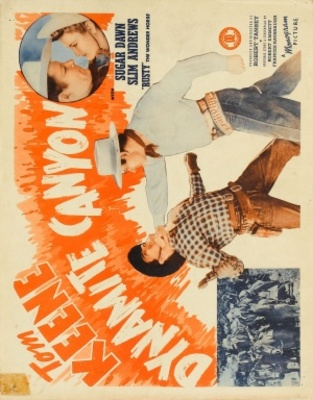 Dynamite Canyon movie poster (1941) poster MOV_44a81173