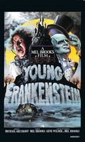 Young Frankenstein movie poster (1974) picture MOV_4660a8df