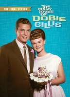 The Many Loves of Dobie Gillis movie poster (1963) picture MOV_a260b1cc