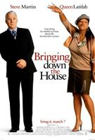 Bringing Down The House movie poster (2003) picture MOV_4aadf24f