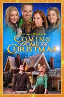 Coming Home for Christmas movie poster (2013) picture MOV_4ca48eaf