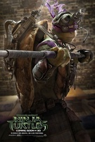 Teenage Mutant Ninja Turtles movie poster (2014) picture MOV_4fde2f6b