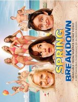 Spring Breakdown movie poster (2009) picture MOV_542dff9d