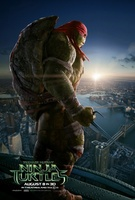 Teenage Mutant Ninja Turtles movie poster (2014) picture MOV_542e51c4