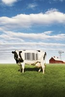 Food, Inc. movie poster (2008) picture MOV_551981fa
