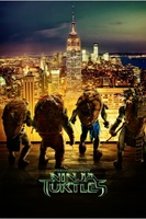 Teenage Mutant Ninja Turtles movie poster (2014) picture MOV_55e3fbd8