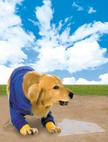 Air Bud: Seventh Inning Fetch movie poster (2002) picture MOV_58495455