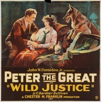 Wild Justice movie poster (1925) picture MOV_588842de
