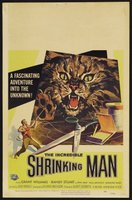 The Incredible Shrinking Man movie poster (1957) picture MOV_f8d5973c