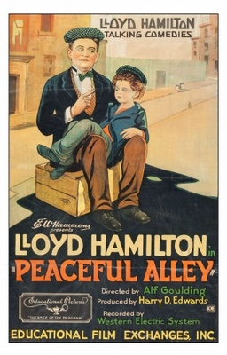 Peaceful Alley movie poster (1929) poster MOV_5b485c30