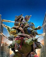 Teenage Mutant Ninja Turtles movie poster (2014) picture MOV_5ca774b8